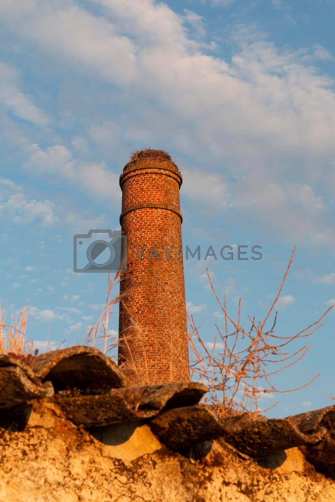 Old chimney with stork's nest in southern Andalusia