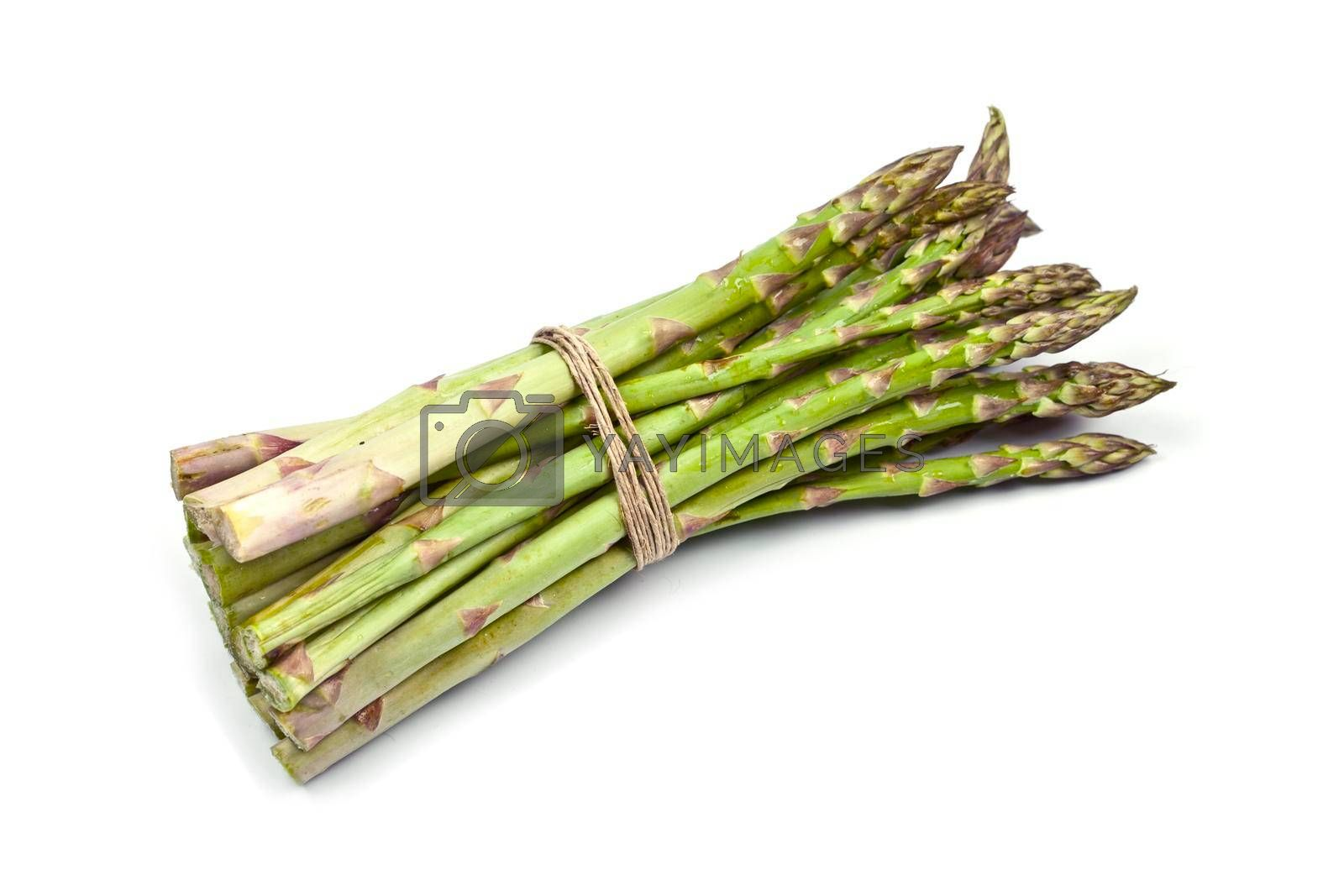 Bunch of fresh raw garden asparagus isolated on white background. Green spring vegetables. Edible sprouts of asparagus.