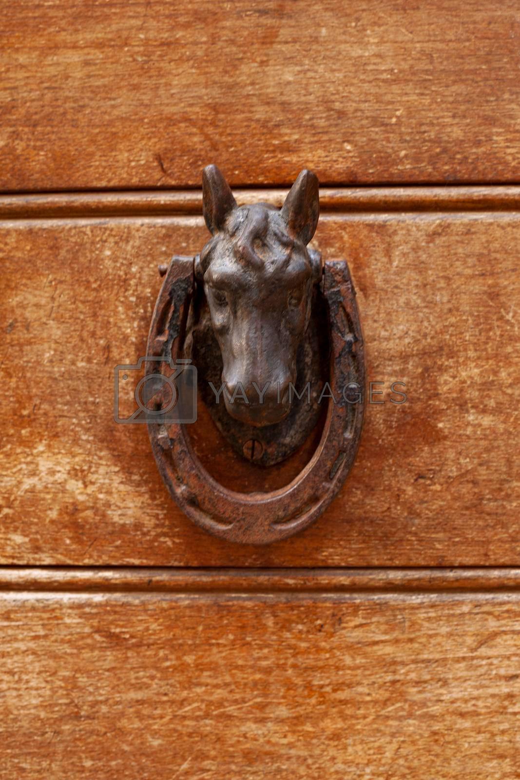 Ancient italian horse shaped door knocker on wooden brown door background.