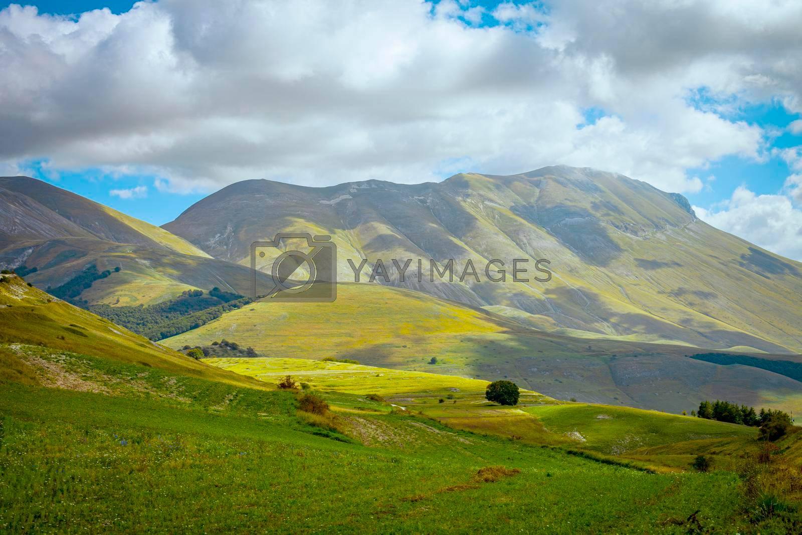 National Park of the Sibillini Mountains. Fields in Castelluccio di Norcia, Umbria, Italy.