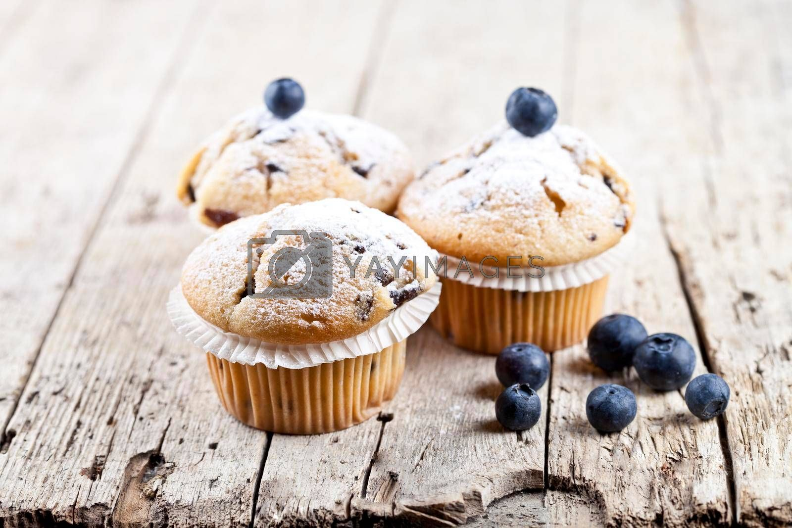 Homemade fresh muffins with blueberries on rustic wooden table background.