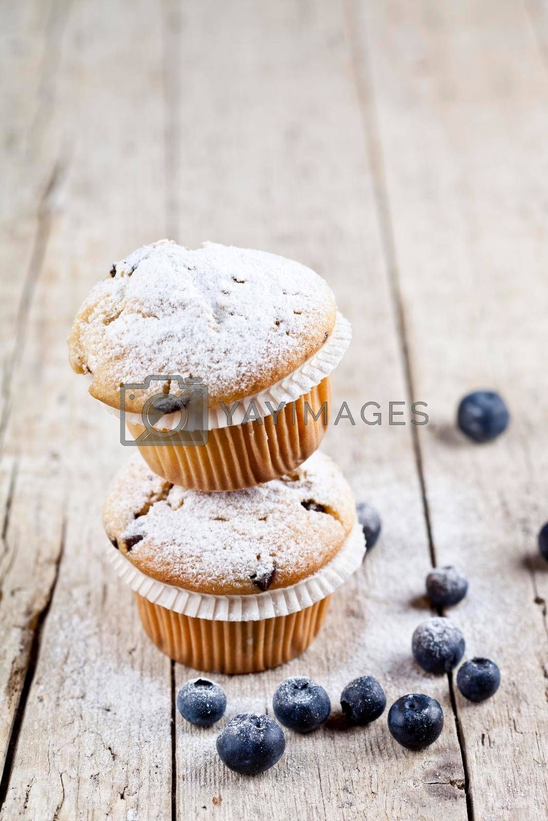 Two fresh homemade muffins with blueberries on rustic wooden table background.