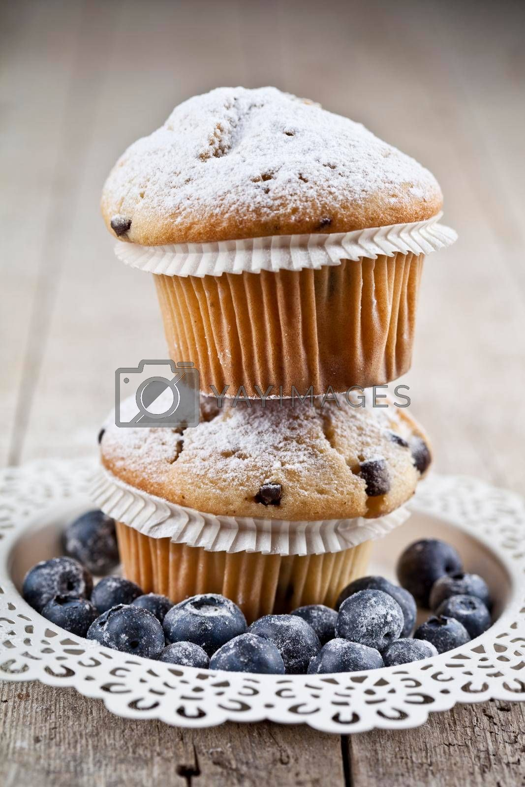 Two homemade fresh muffins with sugar powder and blueberries on white plate on rustic wooden table background.