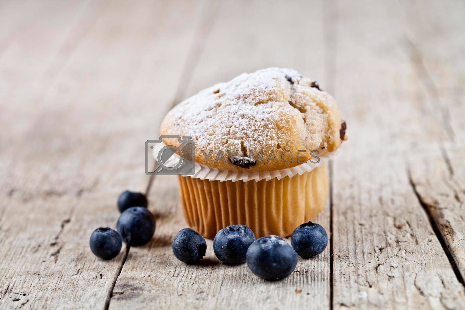 Fresh baked homemade muffin with sugar power and blueberries on rustic wooden table background.
