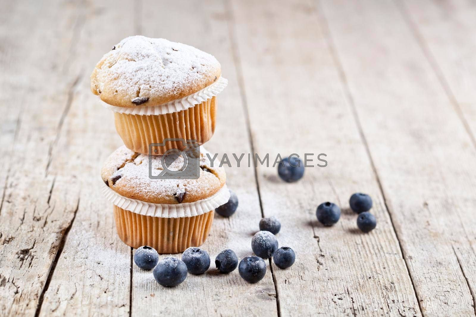 Two fresh homemade muffins with blueberries on rustic wooden table background. With copy space.