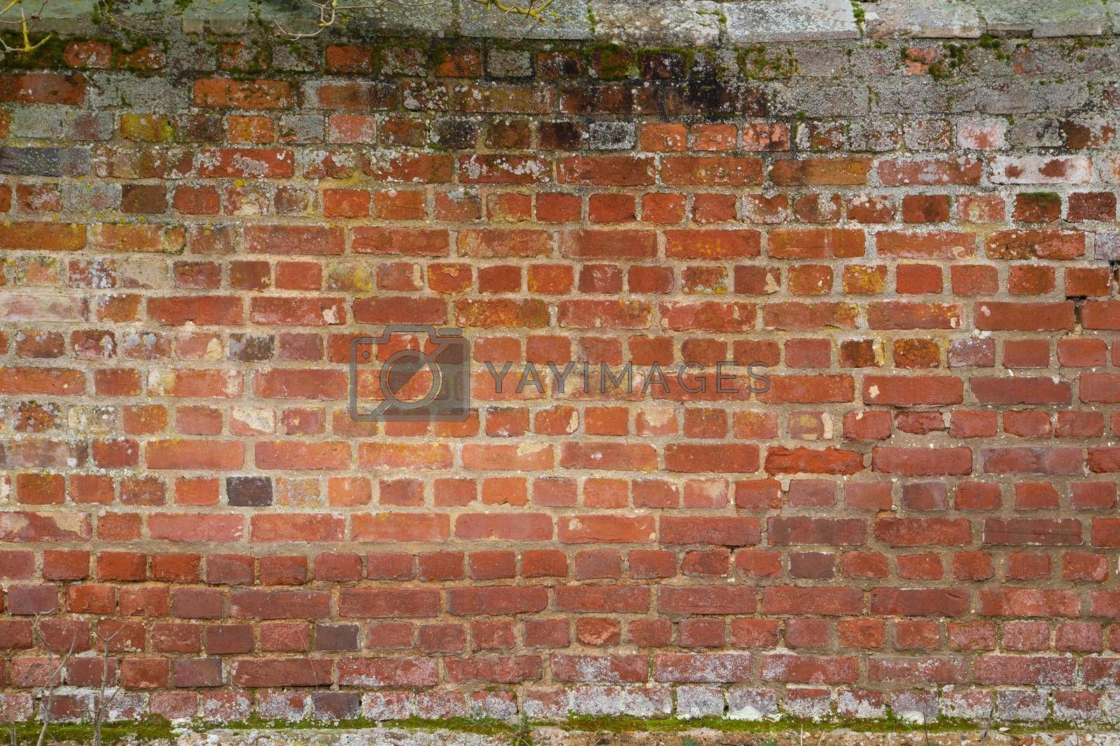 old grungy red brick wall surface with moss, Building Facade, Suffolk UK