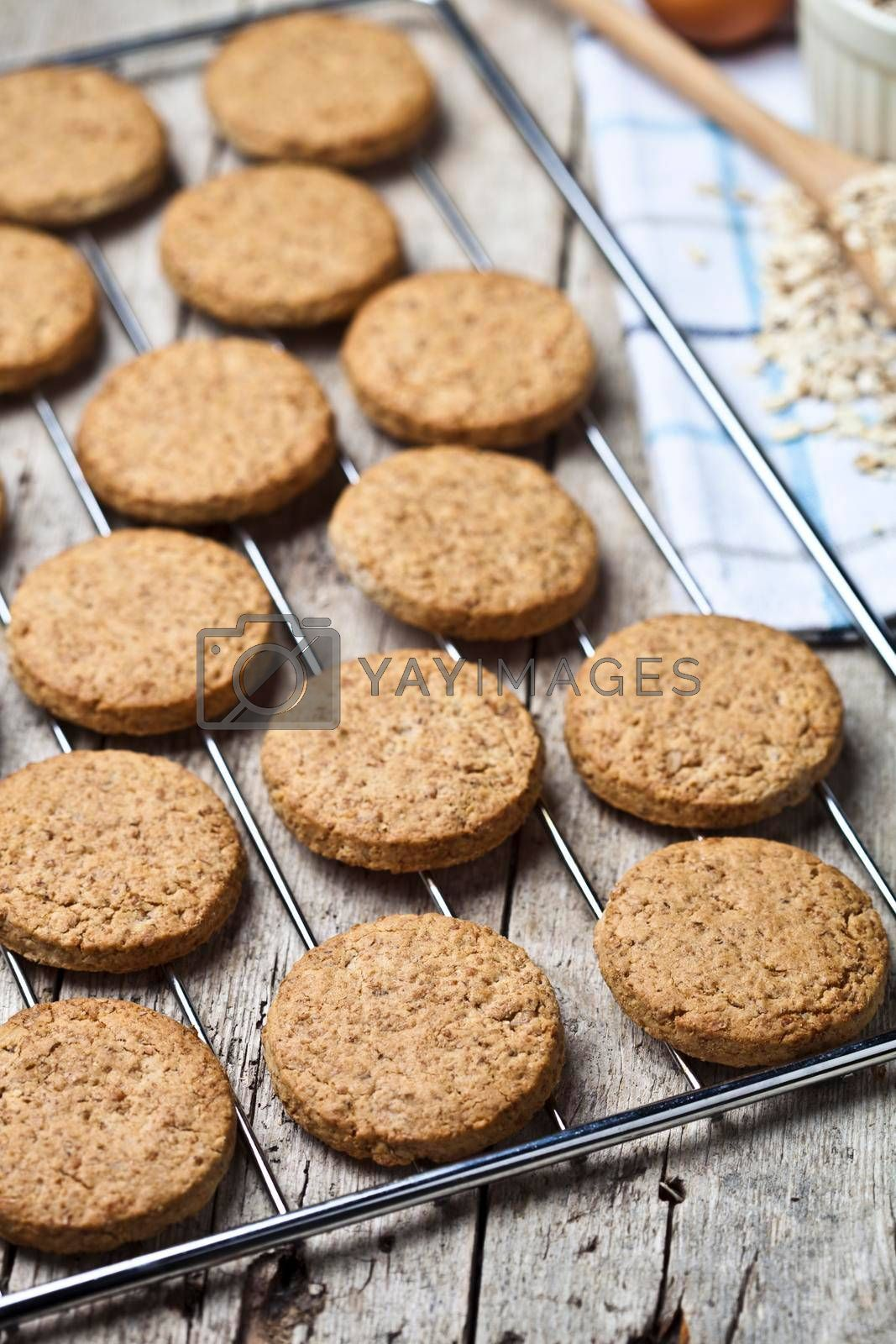 Baking grid with fresh oat cookies on rustic wooden table background and kitchen utensil closeup.