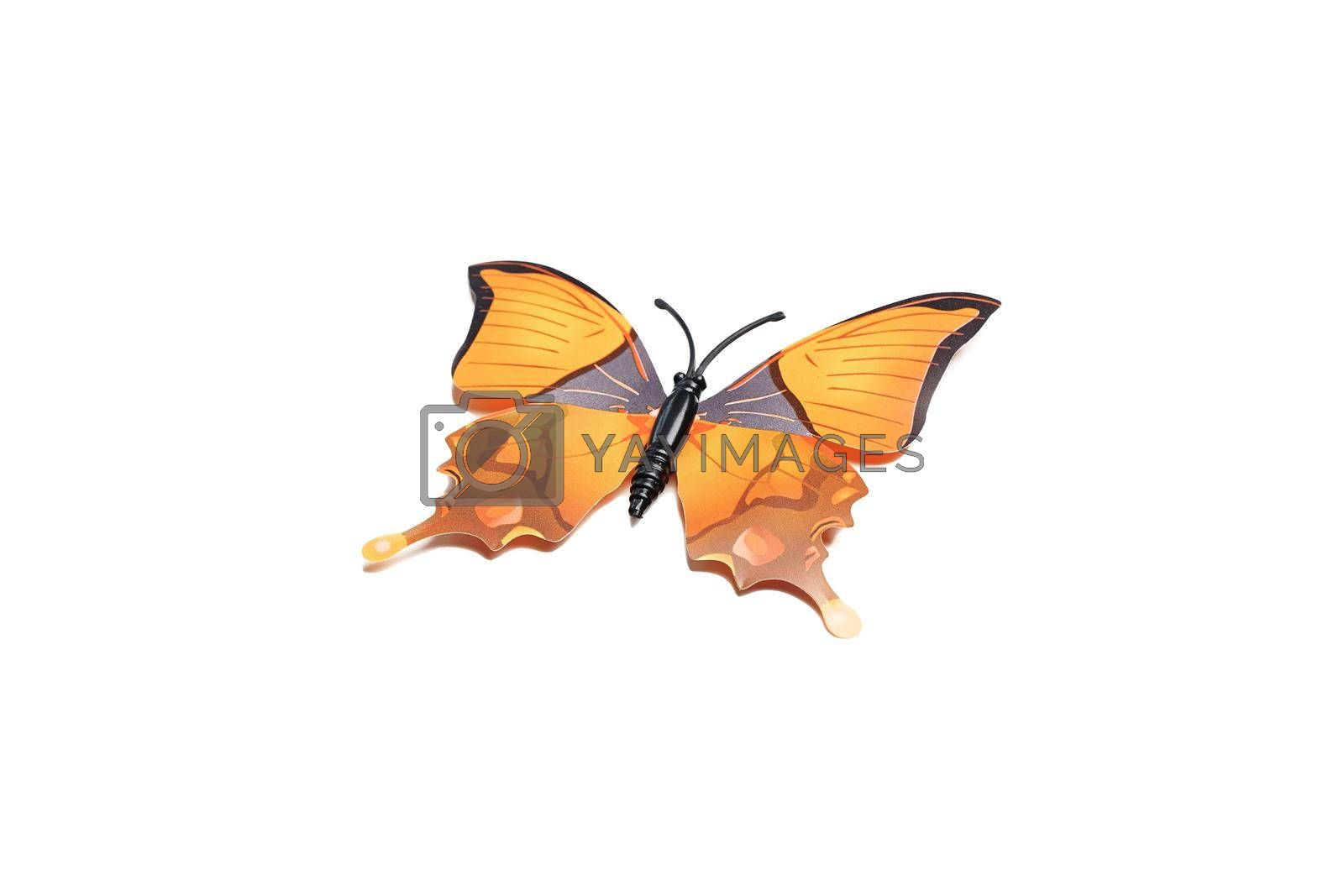 Orange flying butterfly plastic with open wings top view isolated on white.