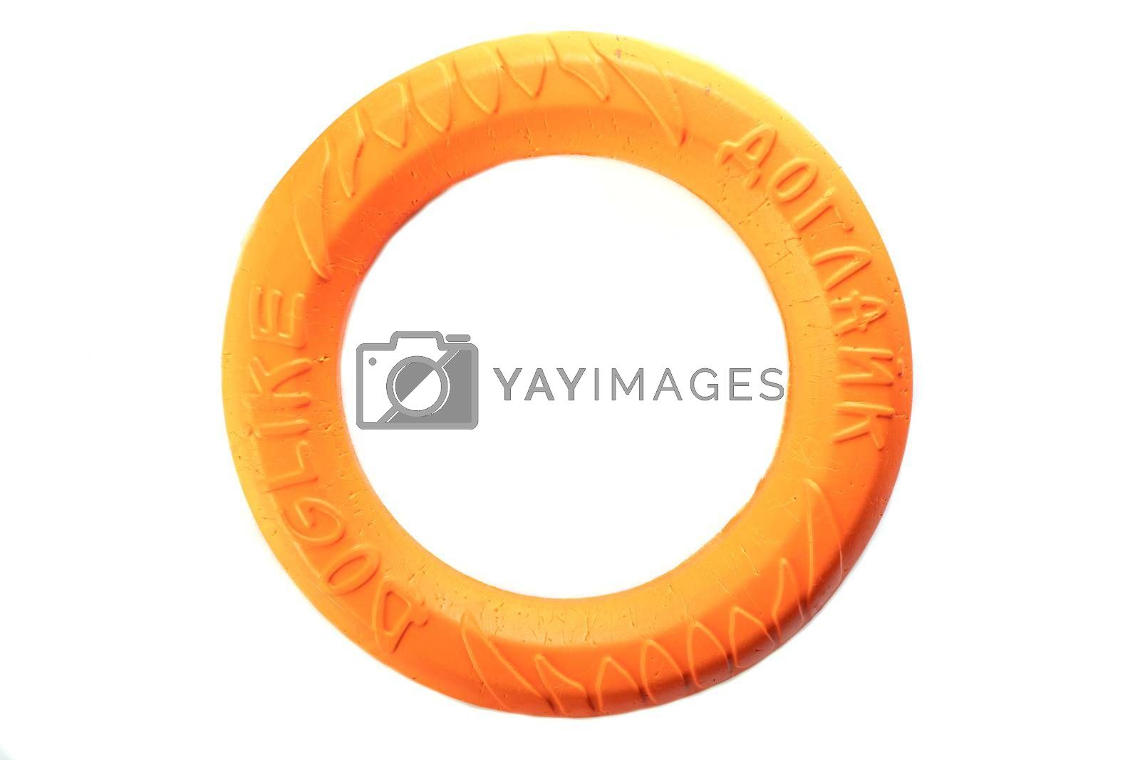 Dog ring pet toy good for training on white background. Russia, Omsk, 17.012020