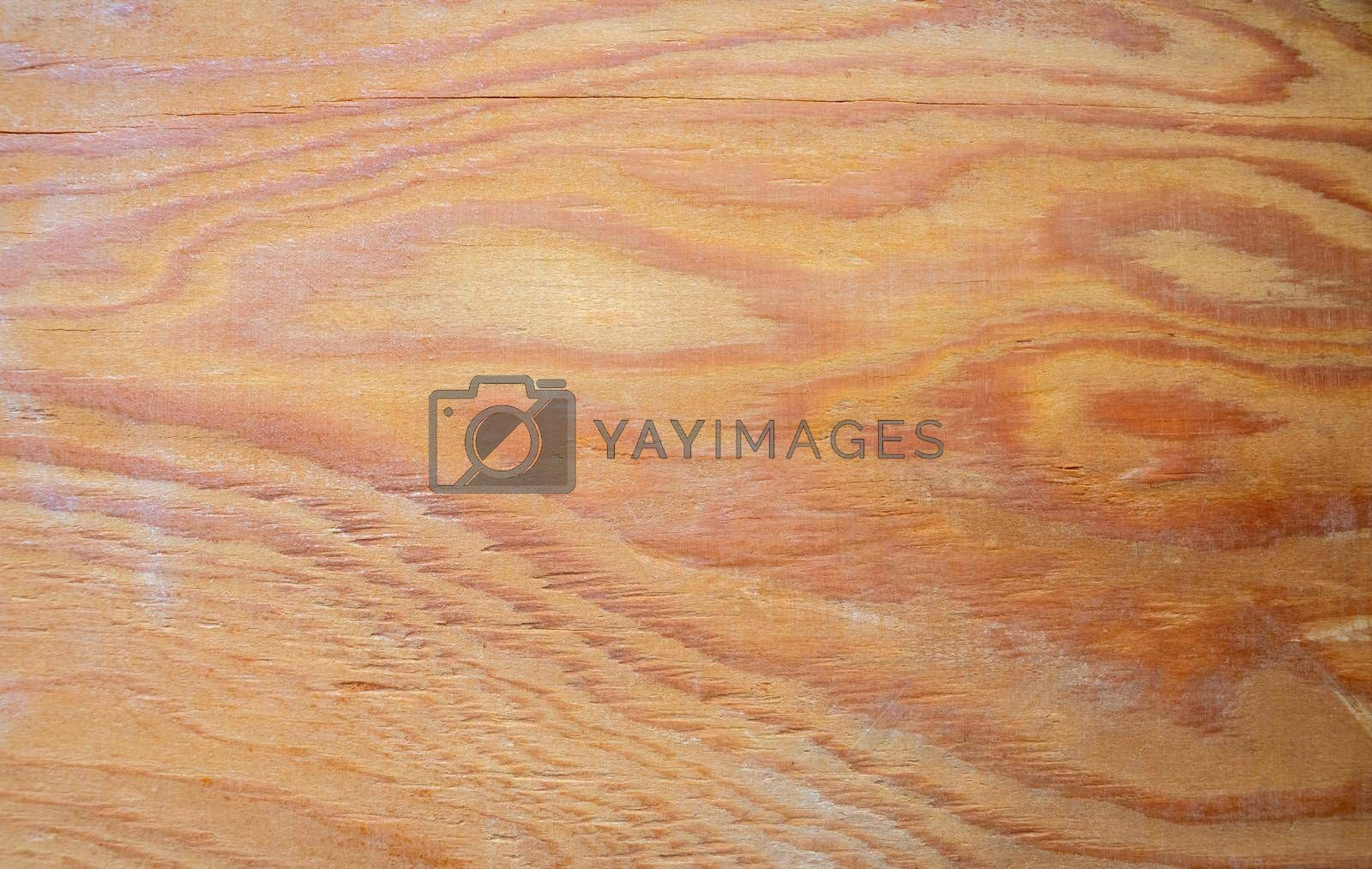 The texture of the wood. background surface with a natural pattern. Space for text by lapushka62