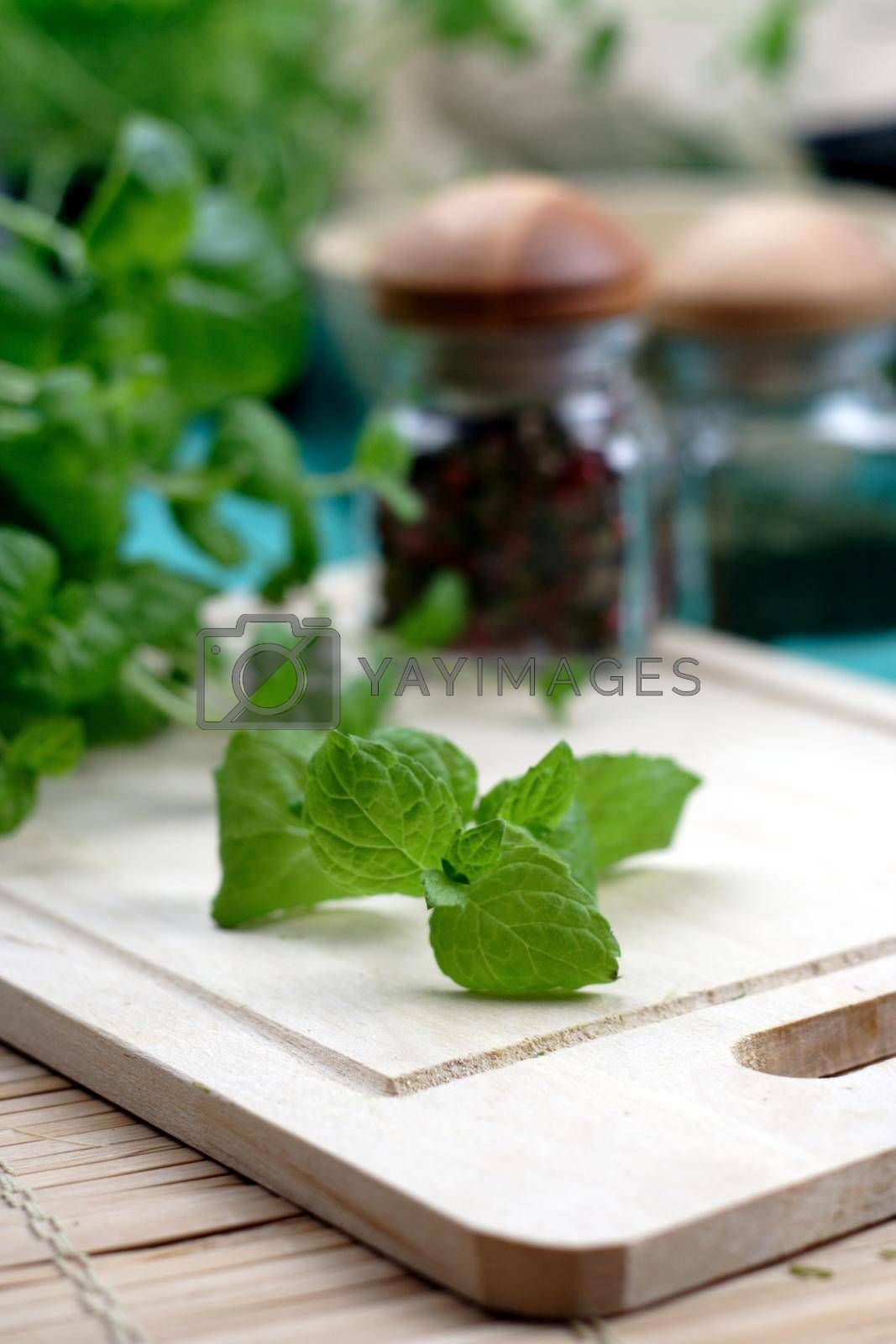 Close up of oregano on desk