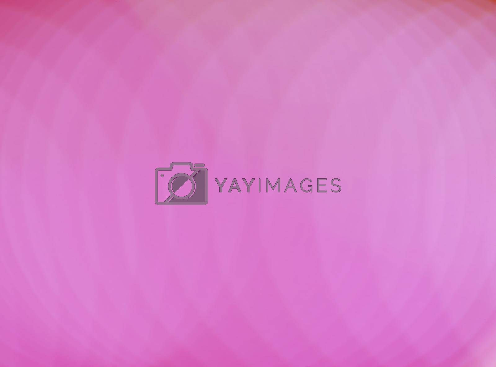 Luxury abstract circle pink background with lines