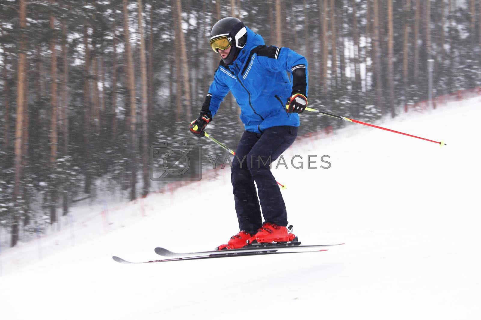 Alpine skier skiing downhill jumping, forest on background
