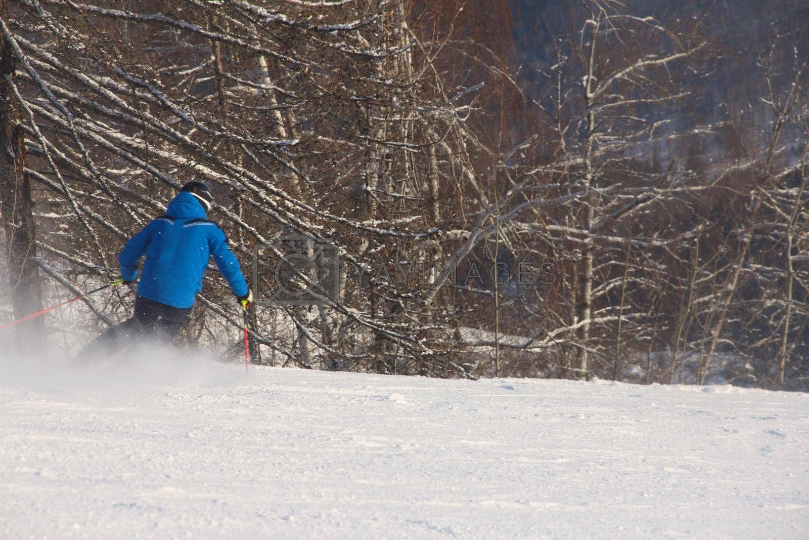 Male skier skiing downhill in mountains snowy day