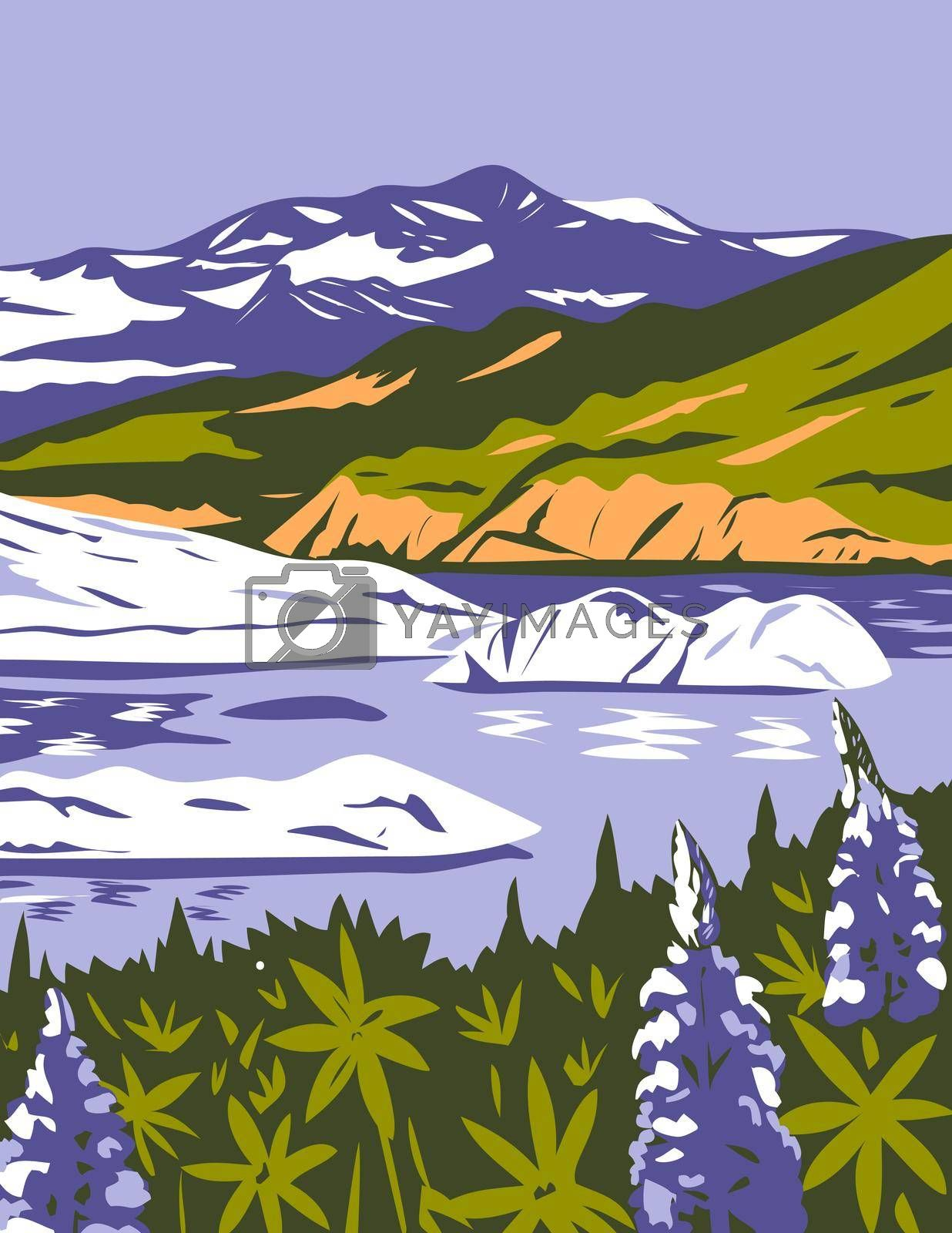 WPA poster art of the Wrangell-St. Elias National Park and Preserve with purple lupins in Nizina Lake in Alaska, United States of America in works project administration or federal art project style.
