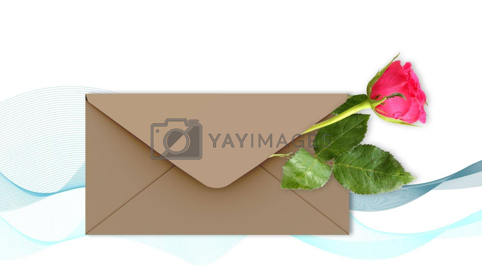Single Red rose flower on white background with abstract waves, envelop for mock up. Flowers for holiday cards, mother's day, 8 March, birthday, wedding, Valentine's Day. Top view, flat lay