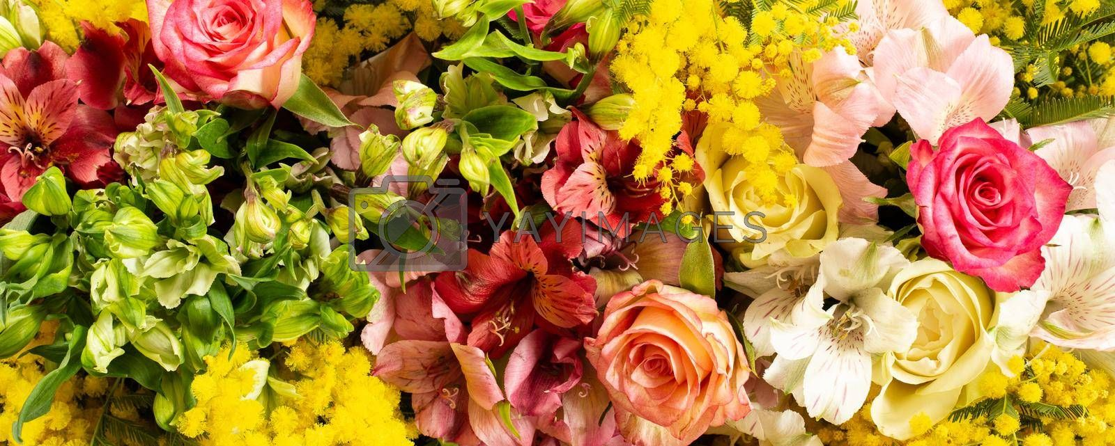 Close up fresh spring flowers. Mimosa, roses. Yellow red vivid background. Flat lay, top view