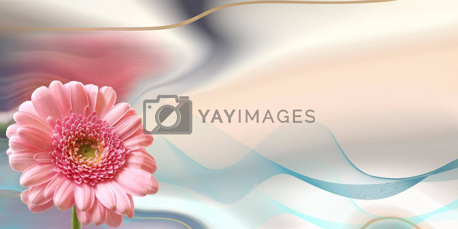 Beautiful pink flowers on pastel abstract background. spring summer gerbera flower in gold frame. Beautiful design for 8th March international Womens day. Mock up. Place for text