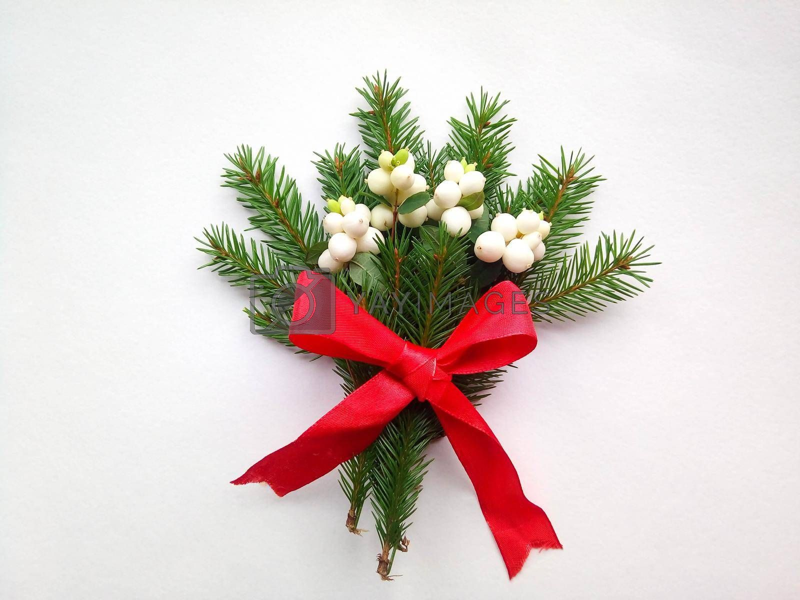 Spruce green branch with white berries with a red ribbon on a white background.