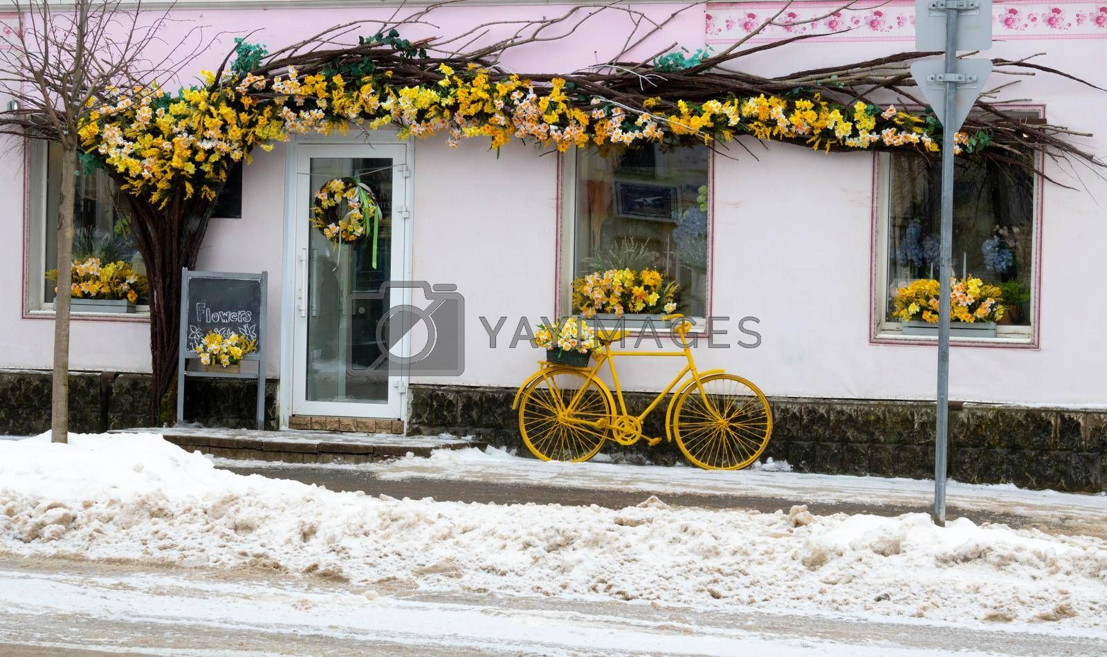 Vintage style flower shop, yellow bicycle with basket and daffodils.