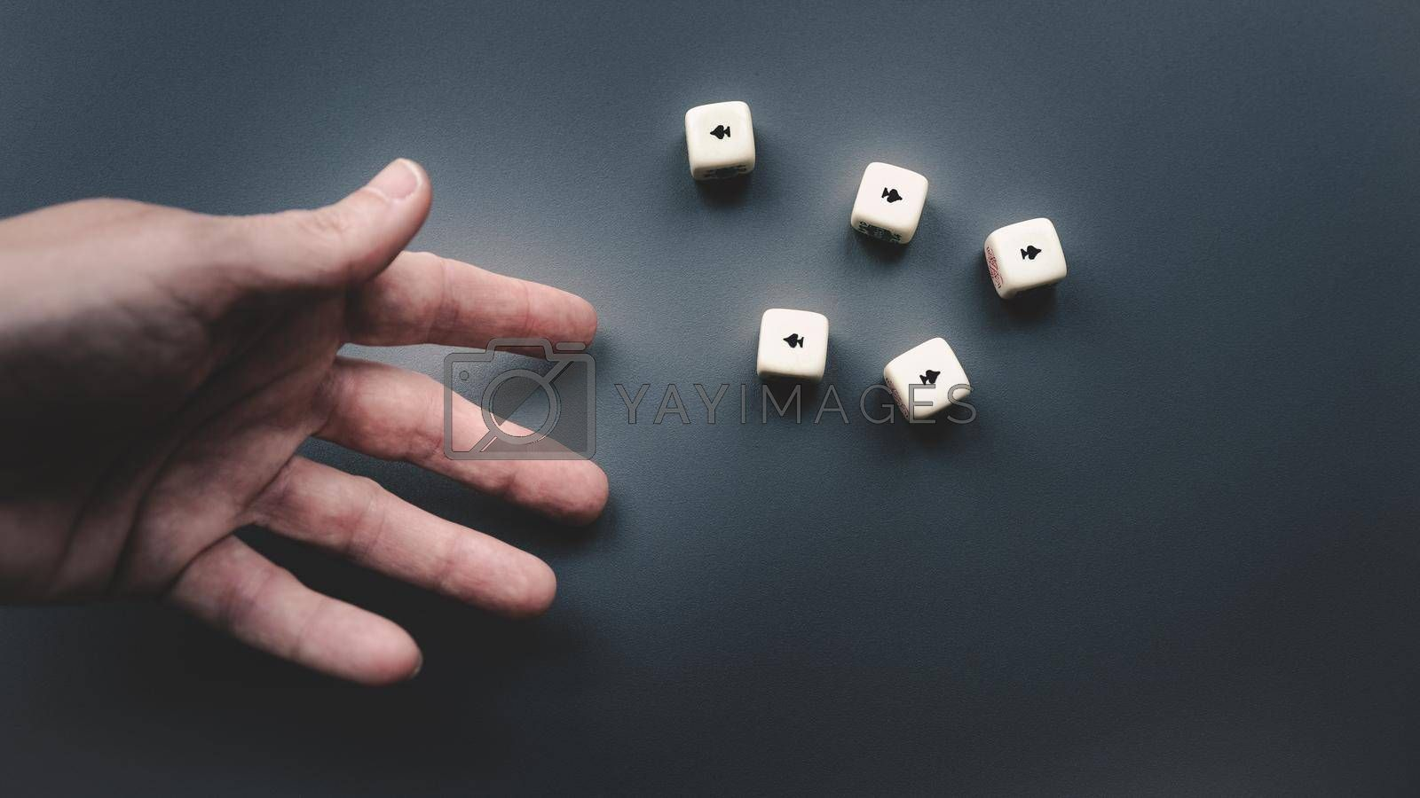 Royalty free image of Throwing the dice on a dark grey background. by maramade
