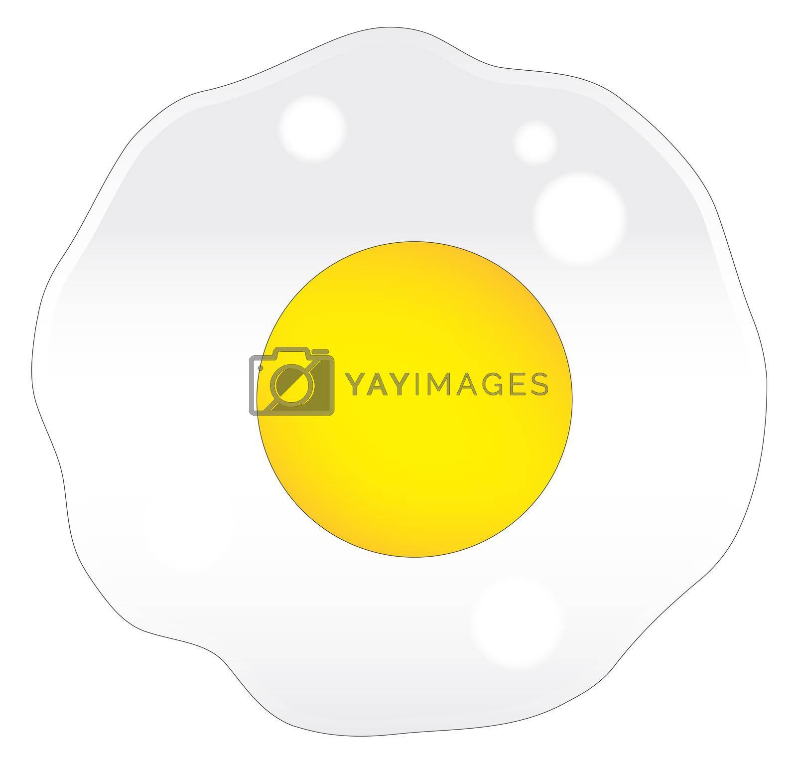 Royalty free image of Fried Egg by Bigalbaloo