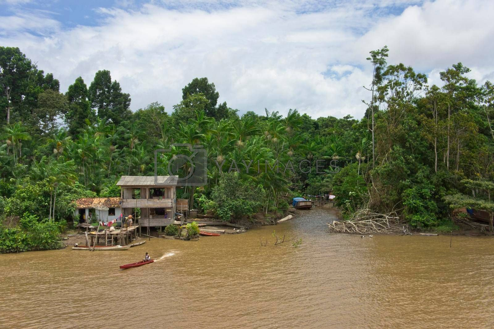 Amazon river view, Indians Village by the river, Brazil, South America