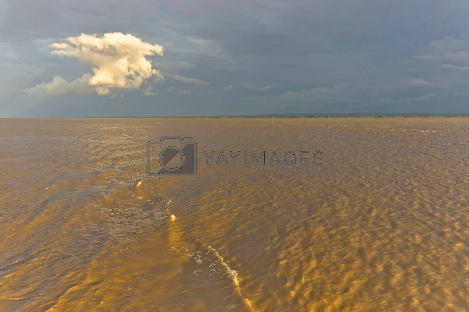 Amazon river, Sunset view, Brazil, South America