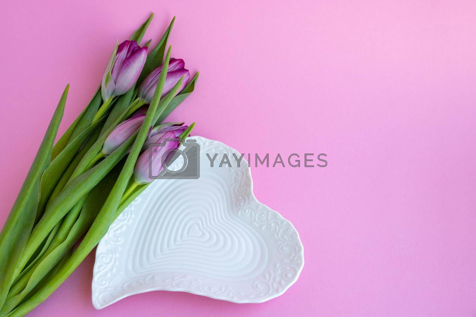 Delicate lilac tulips and a white heart-shaped plate on a pink background. Greeting card, wallpaper, background. Happy Mother's Day, Easter, Valentine's Day, or wedding.