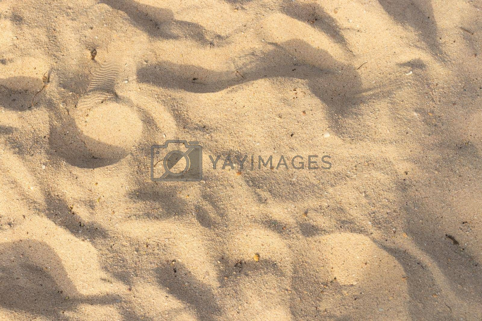 Sand on the beach texture for summer background.