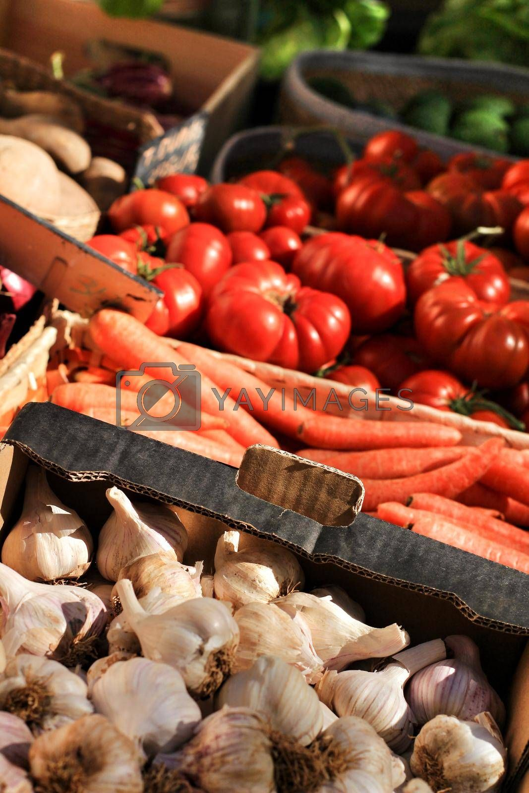 Vegetables for sale at a ecological market stall in Elche, Alicante, Spain.