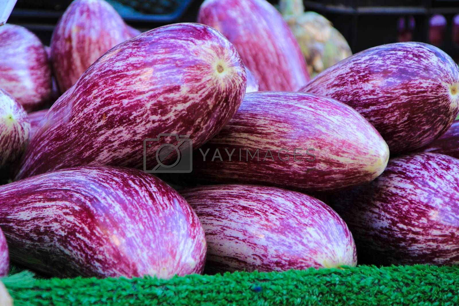Aubergines for sale at a farmer market stall in Spain
