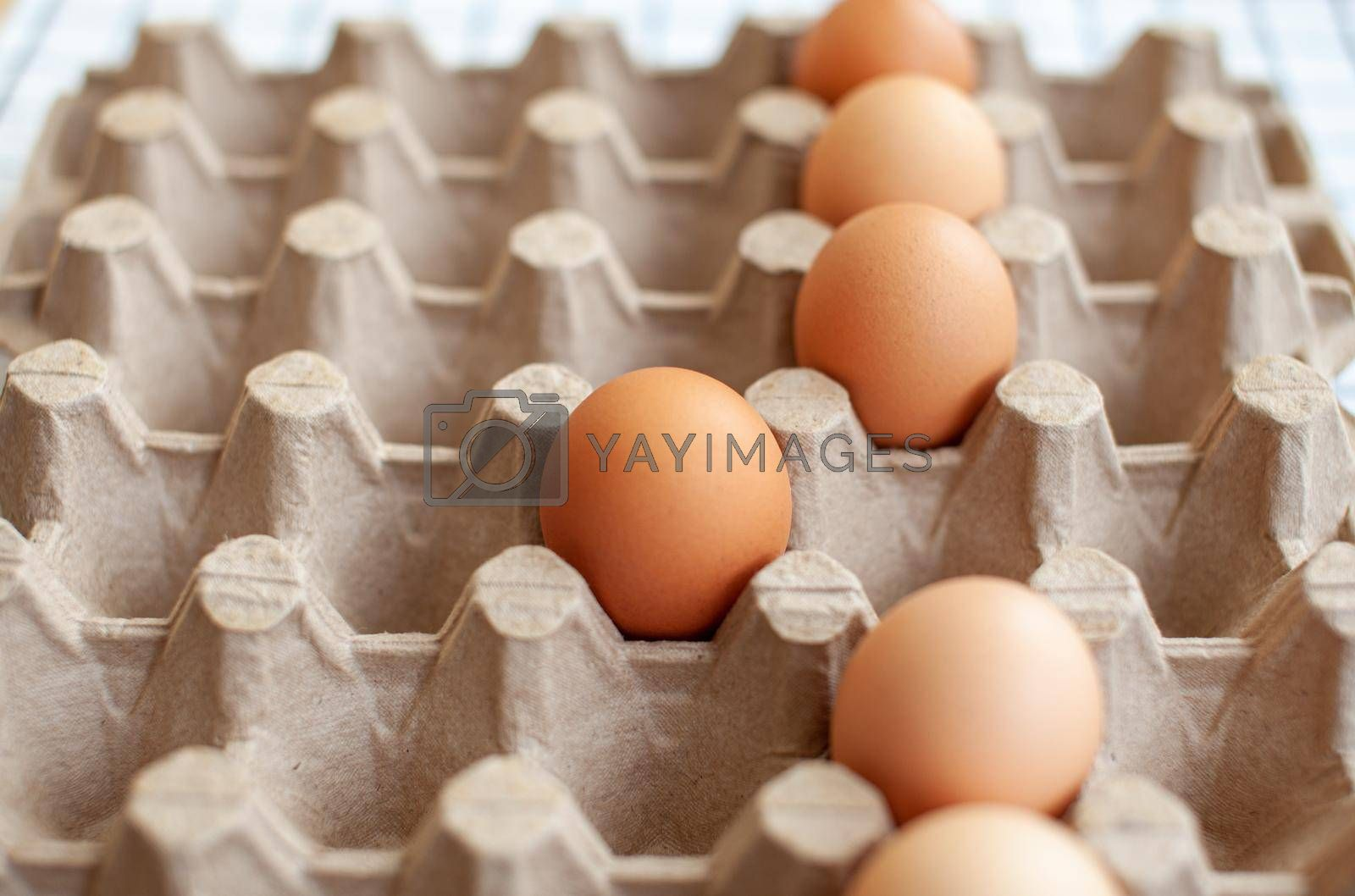 A few brown eggs among the empty cells of a large cardboard bag, a chicken egg as a valuable nutritious product, a tray for carrying and storing fragile eggs. One egg stands out from the row