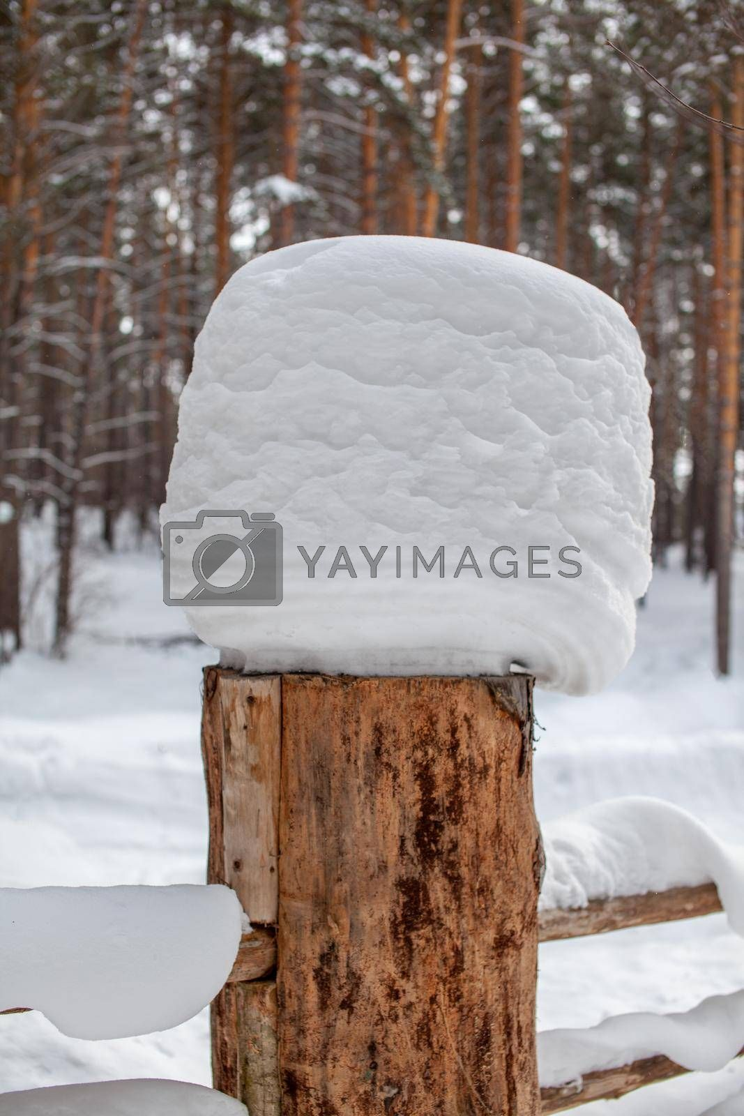 Large snow caps on the stumps of the fence in winter. A wooden fence protects the territory of the house.