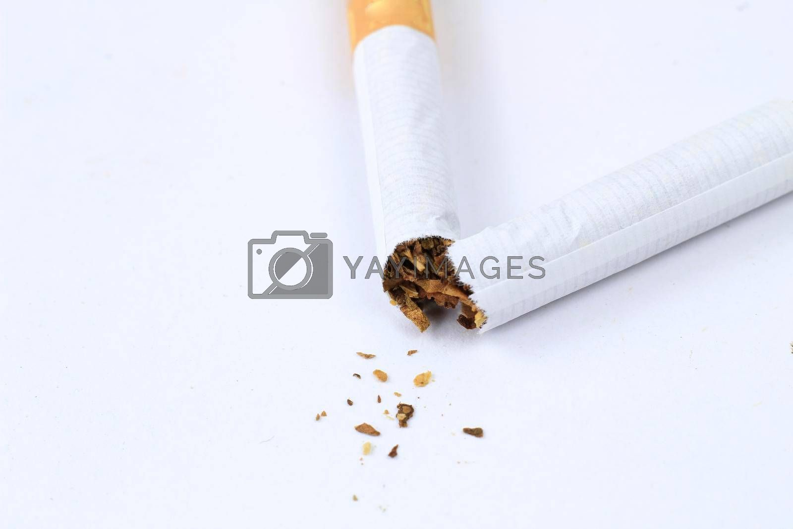 Broken cigarette on white background. Stop smoking concept photography.