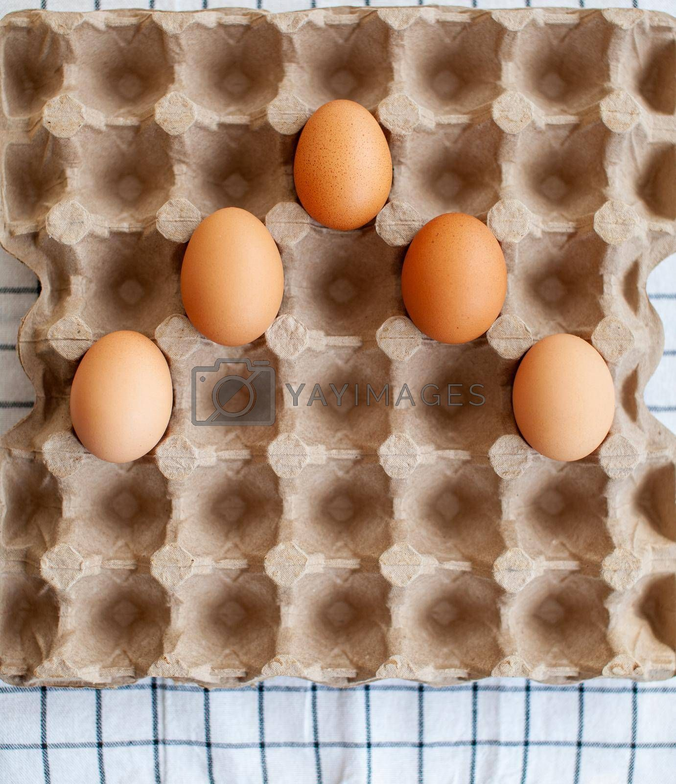 A few brown eggs among the empty cells of a large cardboard bag, a chicken egg as a valuable nutritious product, a tray for carrying and storing fragile eggs