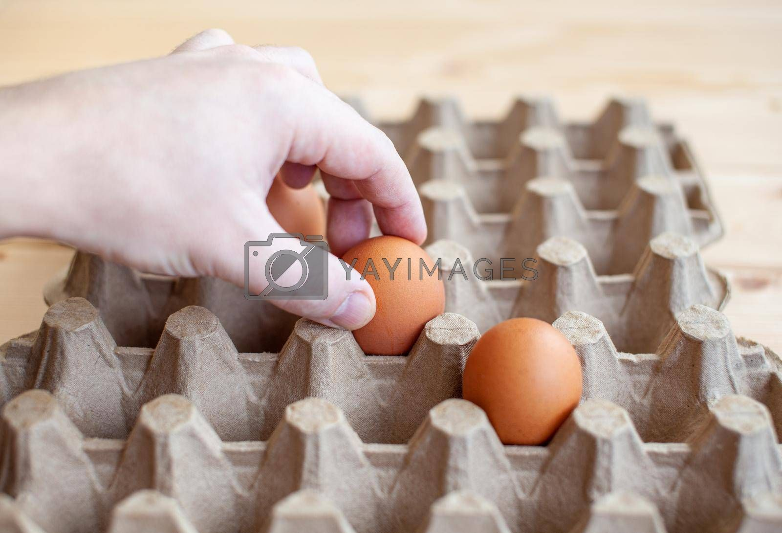 A man takes a brown egg from a cardboard bag with his hand, a chicken egg in his hand for cooking, a tray for carrying and storing fragile eggs.