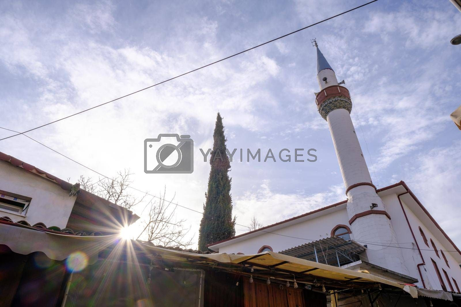 low angle view of Sirince village with a mosque minaret and a tree in a bright air