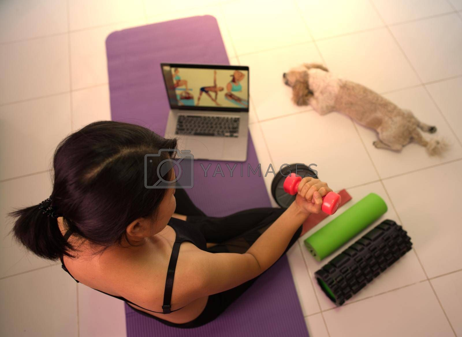 Asian woman training to lift pink dumbbells for building muscle, concept of staying healthy by weight loss and recreation at their own residence.