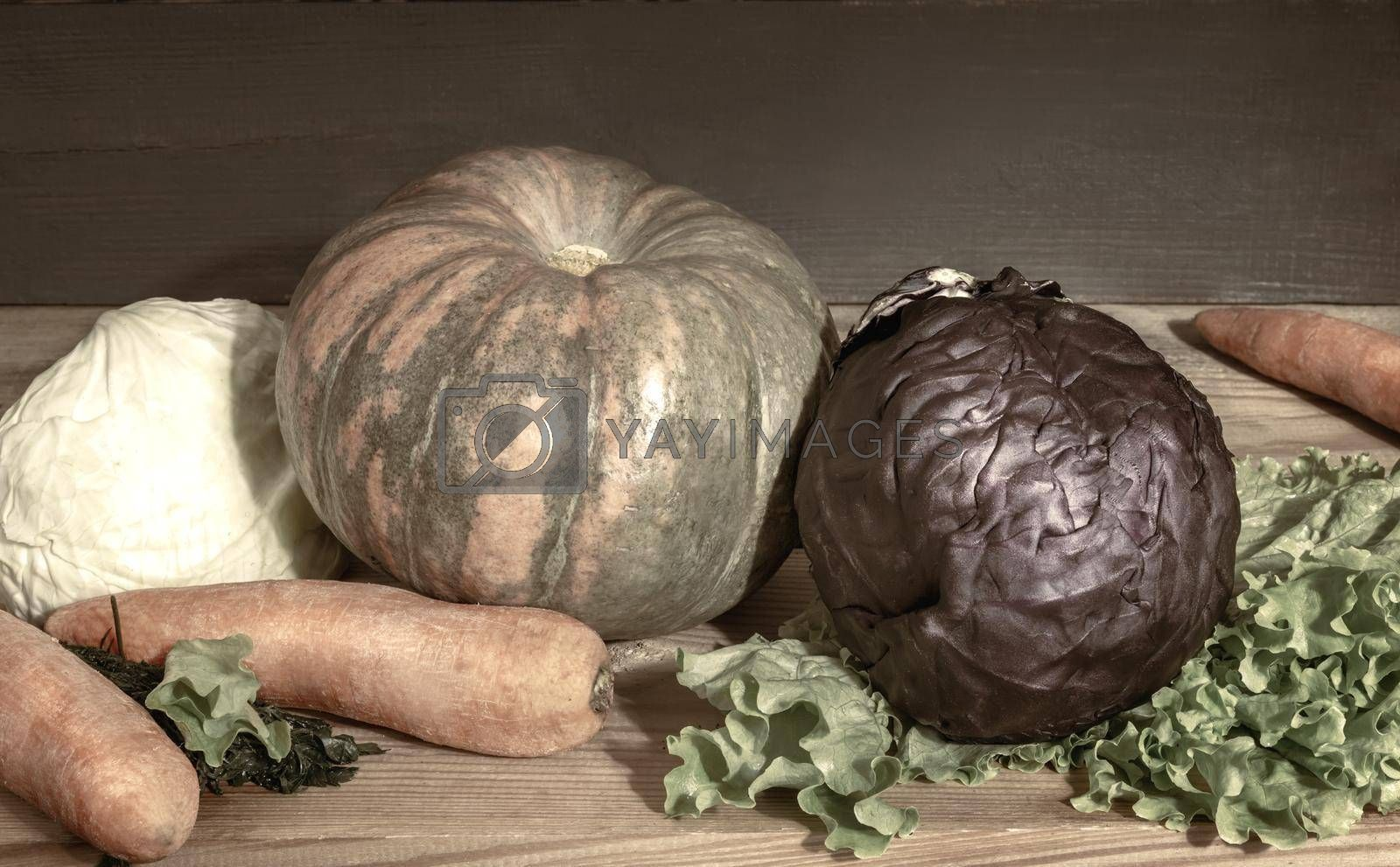 Still life: on a wooden shelf in the basement are pumpkins, carrots, red cabbage and white cabbage. Front view, copy space