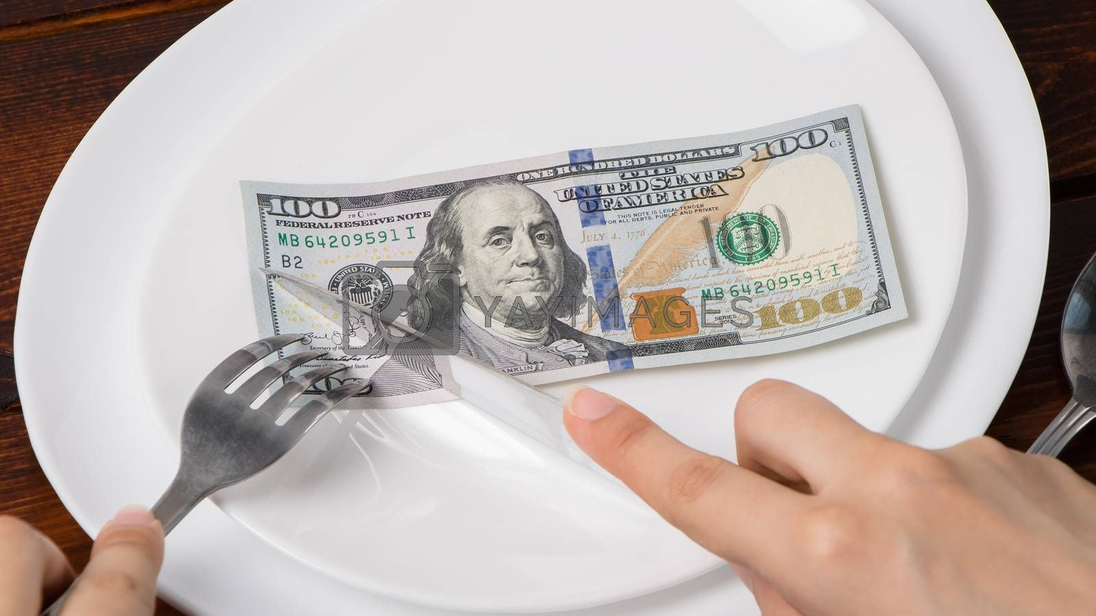 Dollars on a plate.Sawing through America's budget, the living wage, or the dual currency basket in the US.The crisis is caused by the fall in exchange rates.Dollar depreciation. Business and banking