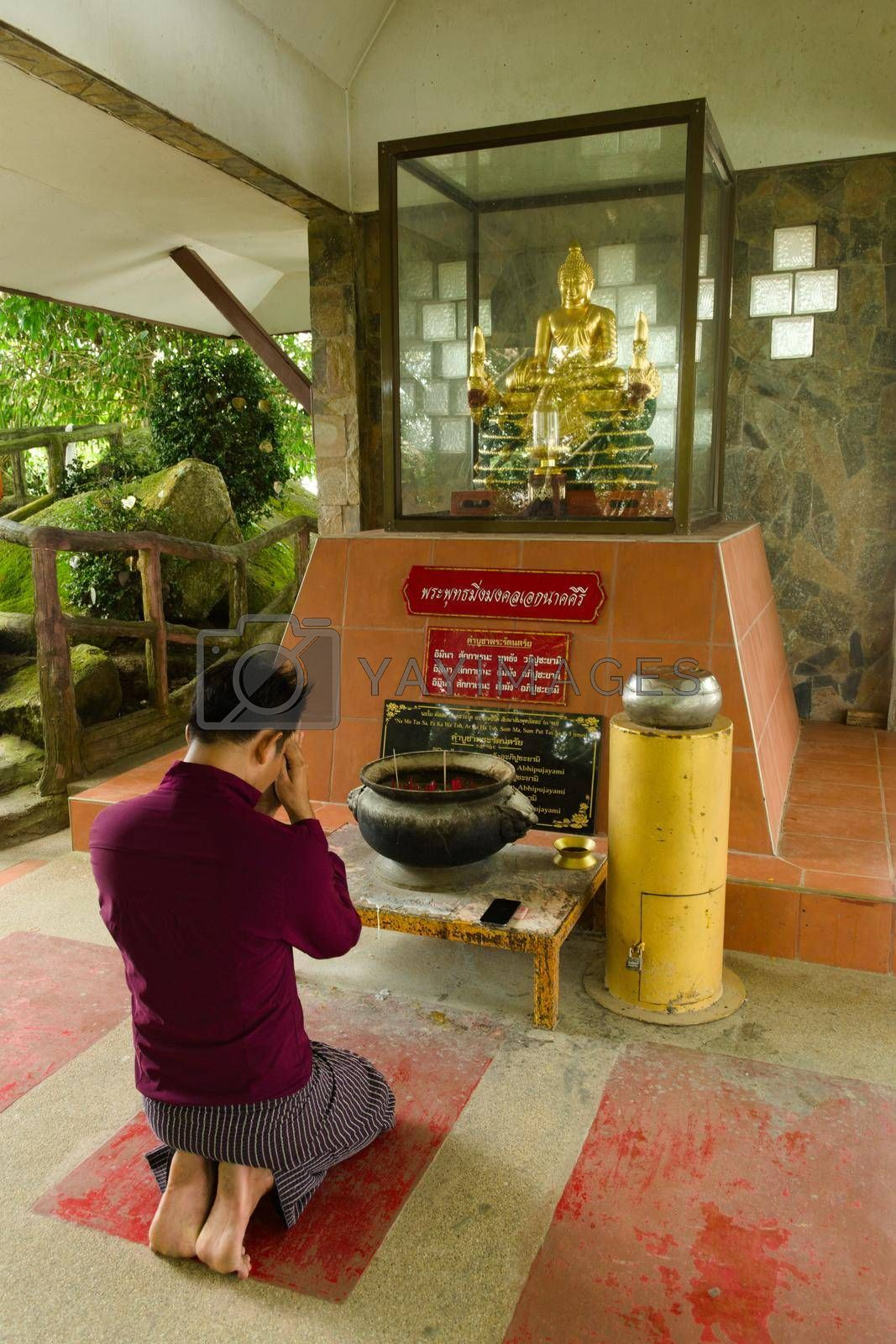 Royalty free image of 2019-11-06 / Phuket, Thailand - A kneeling, bare-footed man praying to a golden statue of Buddha. by hernan_hyper
