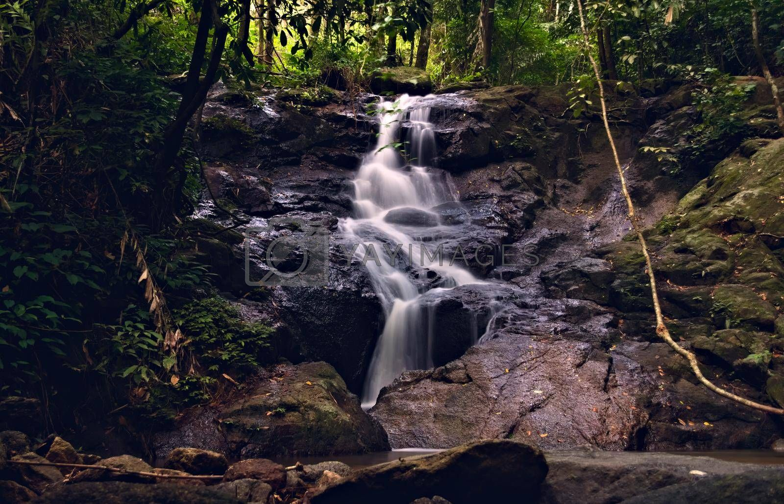 Royalty free image of Kathu waterfall in Phuket, Thailand. Beautiful cascade in the jungle. by hernan_hyper