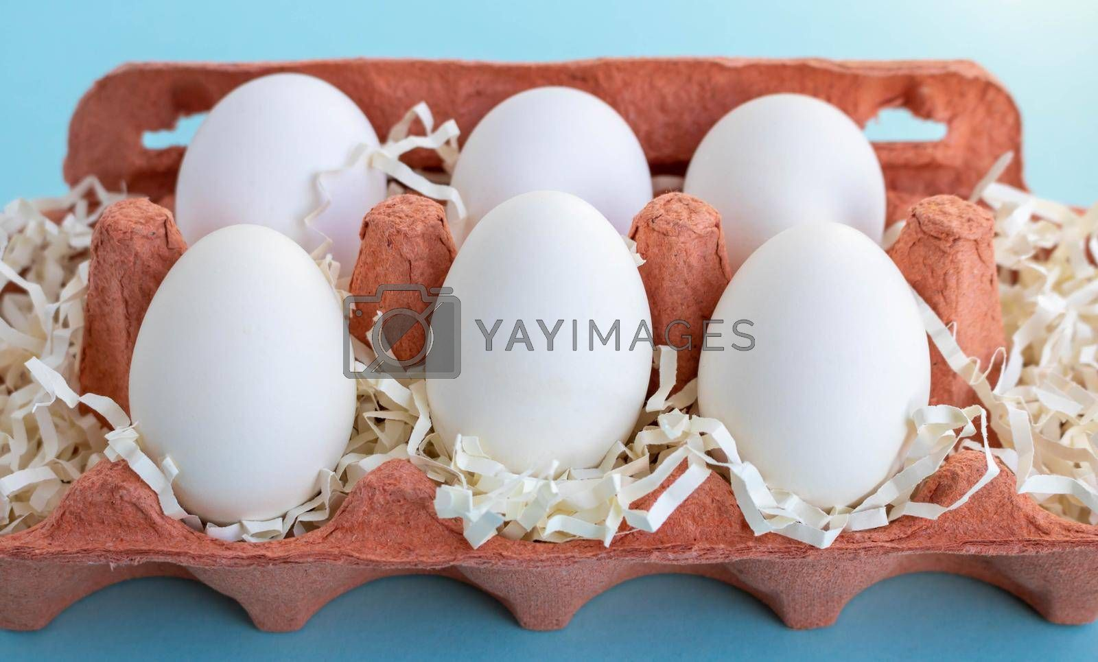Six white fresh organic eggs in a beige eco-friendly cardboard egg container on a blue background. Easter concept, ecology, zero waste by lapushka62