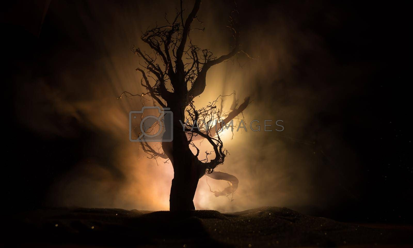 Spooky dark landscape showing silhouettes of trees in the swamp on misty night. Night mysterious forest in fire and dramatic cloudy night sky