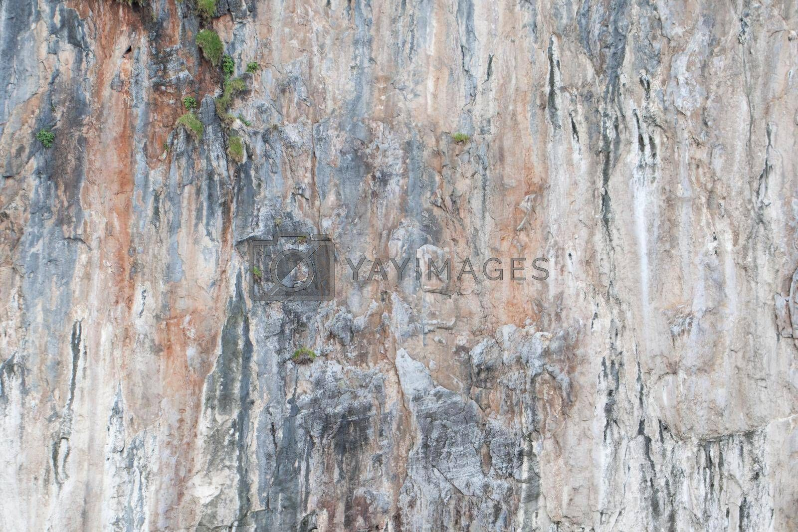 Surface background of limestone rock, Thailand