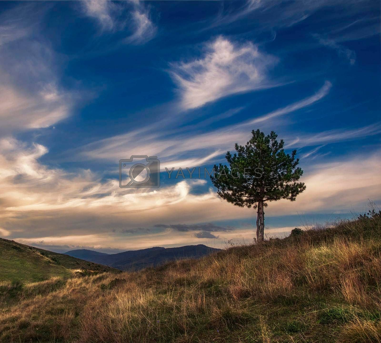 Royalty free image of Macedonia pictures by TravelSync27