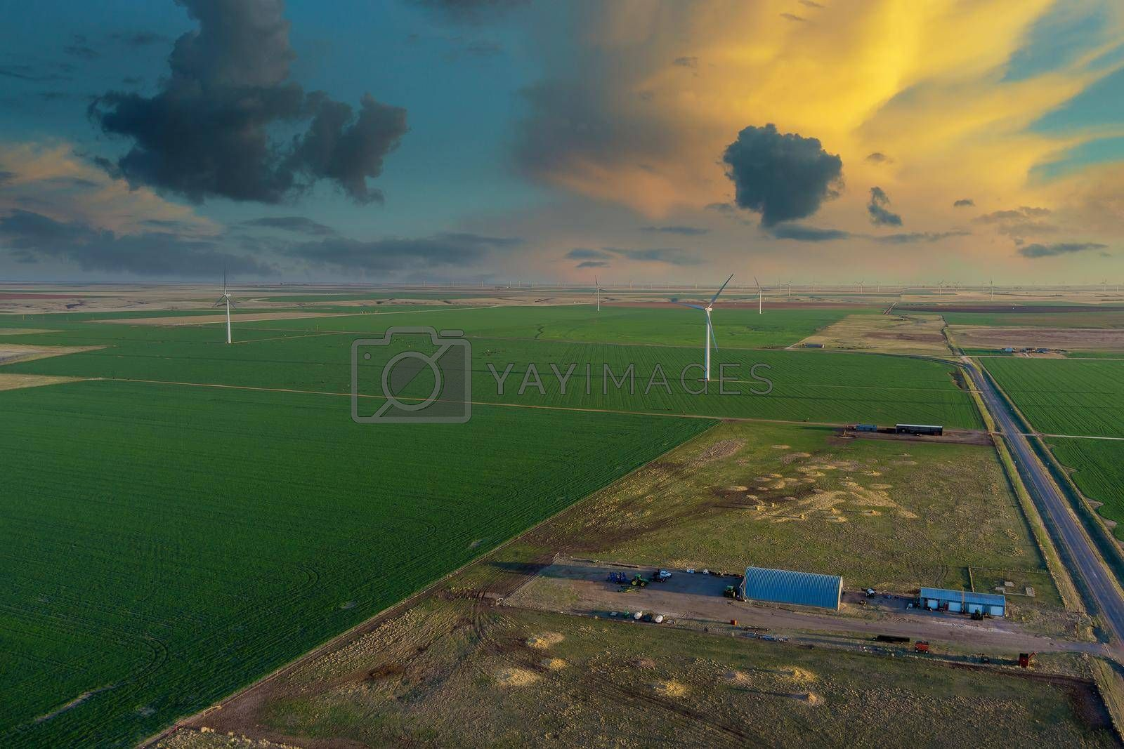 Wind generators at electric farm on Texas along with wind energy