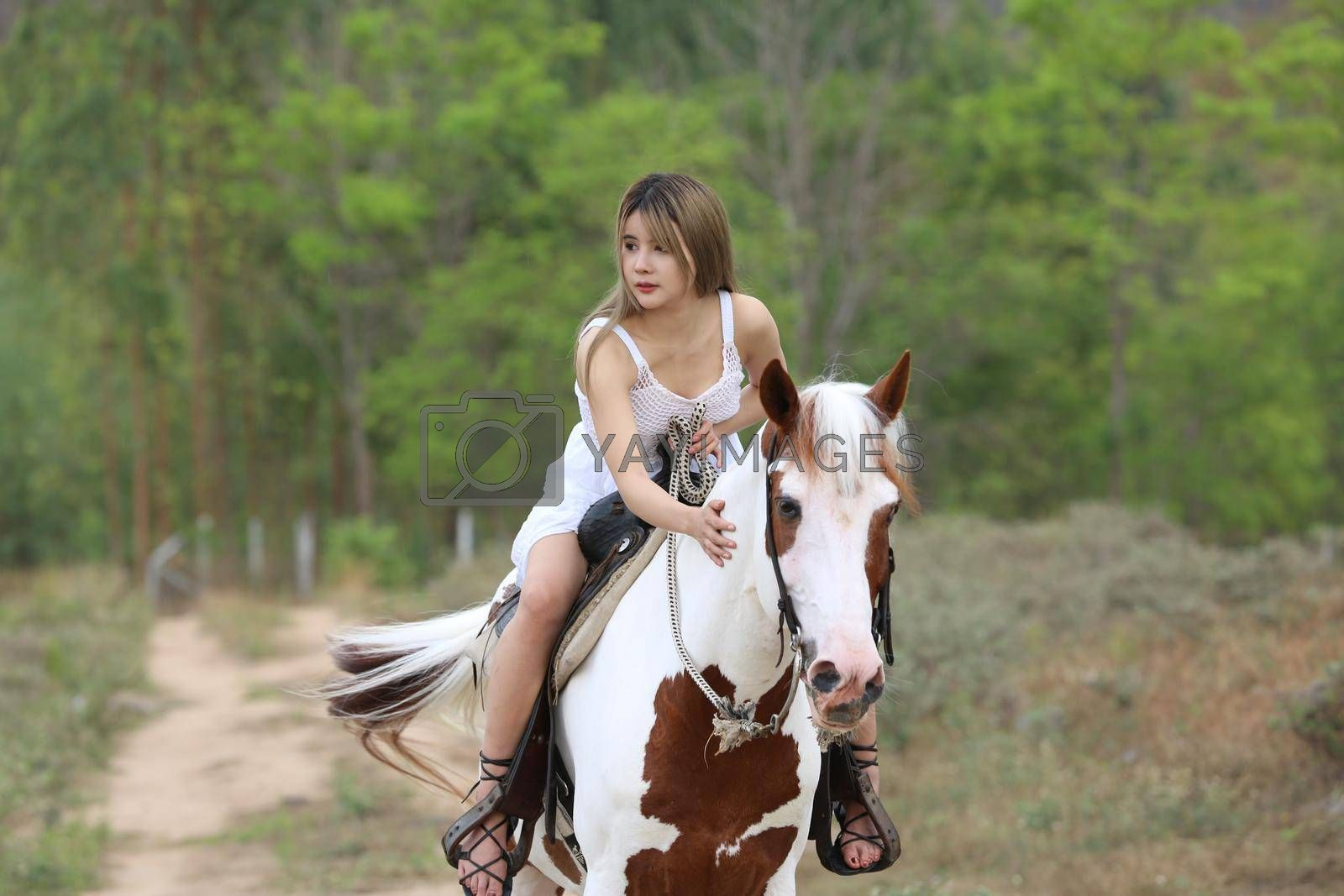 Royalty free image of Women on skirt dress Riding Horses On field landscape Against Sky During Sunset by chuanchai