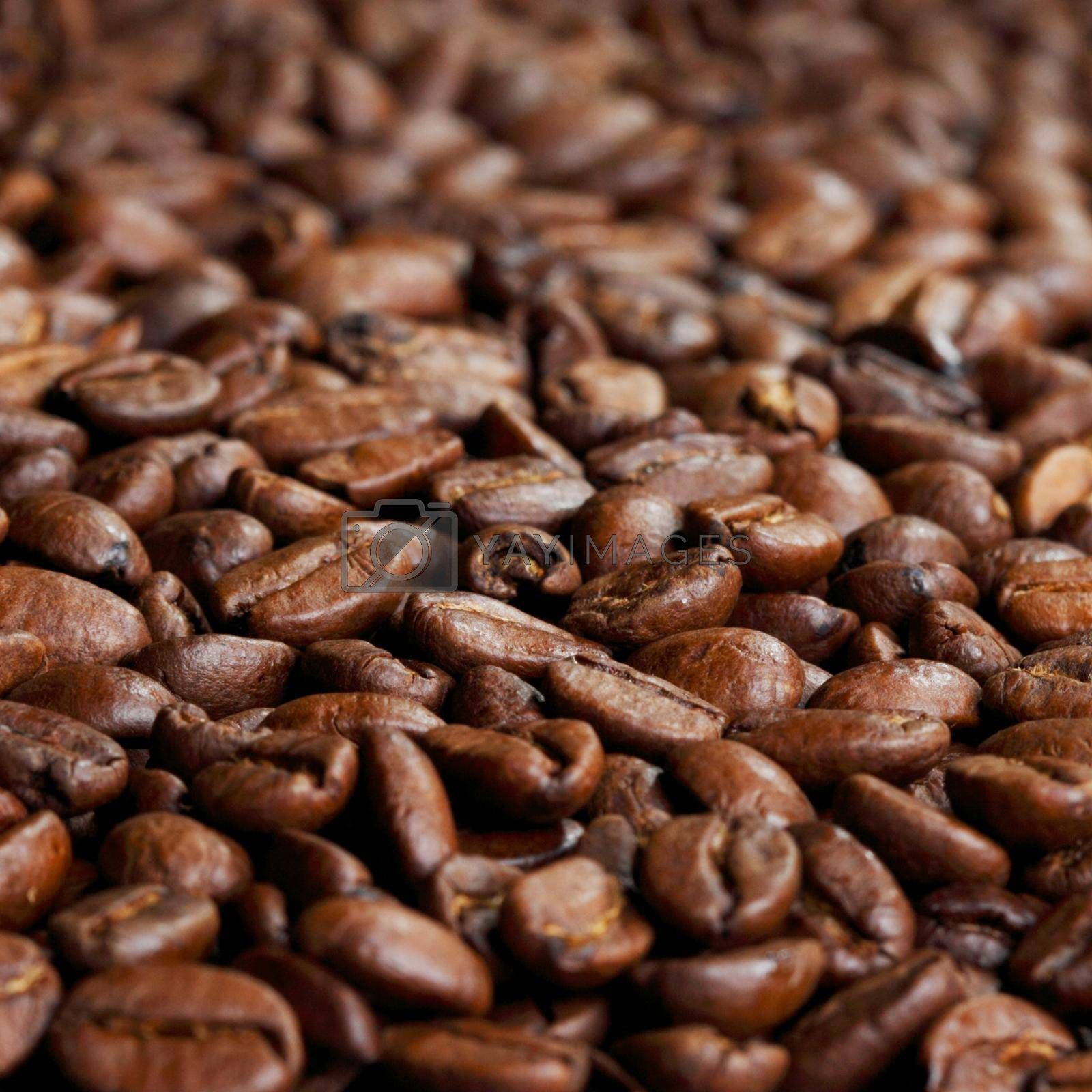 Roasted coffee beans close up detail background